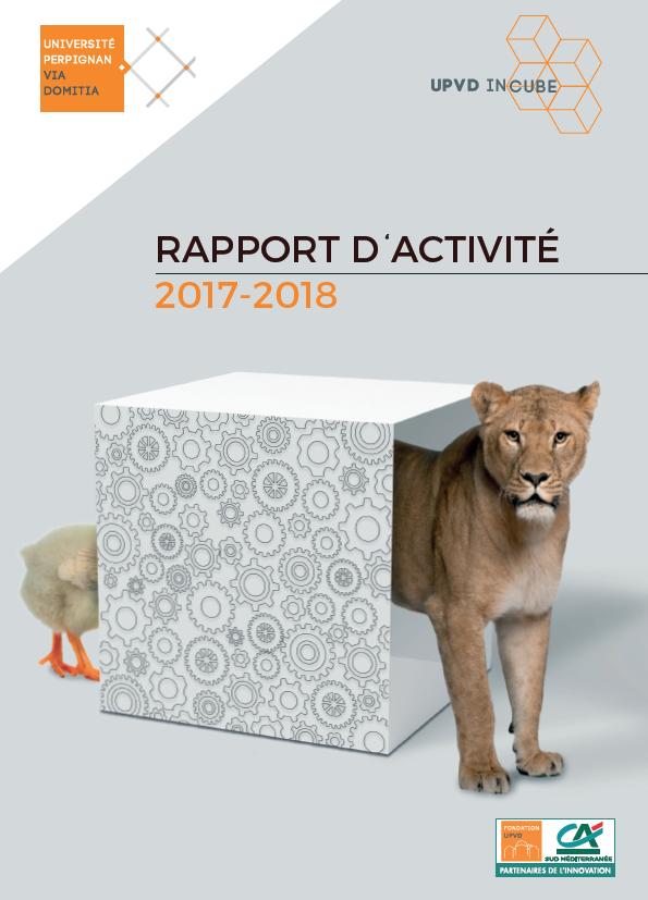 Rapport activité