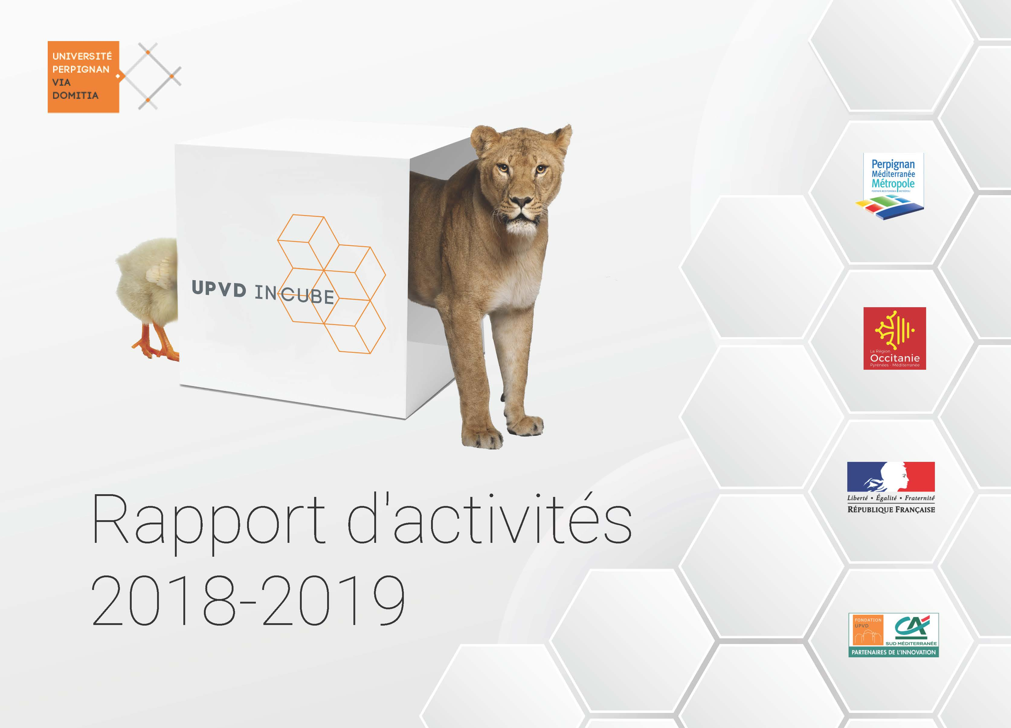 Rapport dactivits 2018 2019 UPVD IN CUBE Page 01